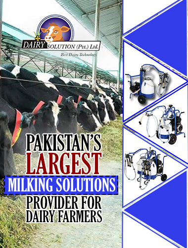 milking solution for dairy farmers