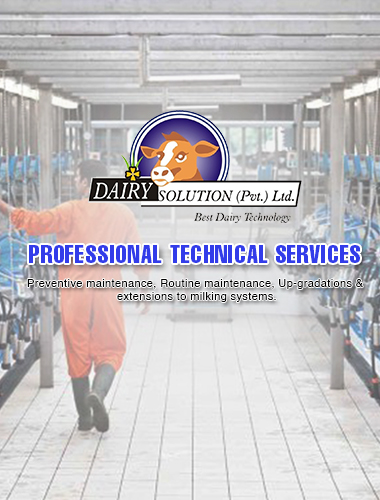 Services provided by company