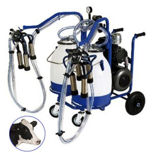 buy online Double Bucket-Double Cluster for cows Italian milking machine