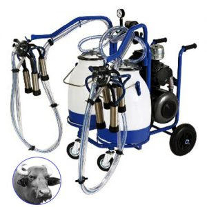 Italian milking machine Double Cluster Double Bucket for buffaloes