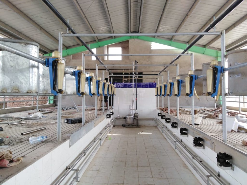 16 Point Milking parlor at dairy farm