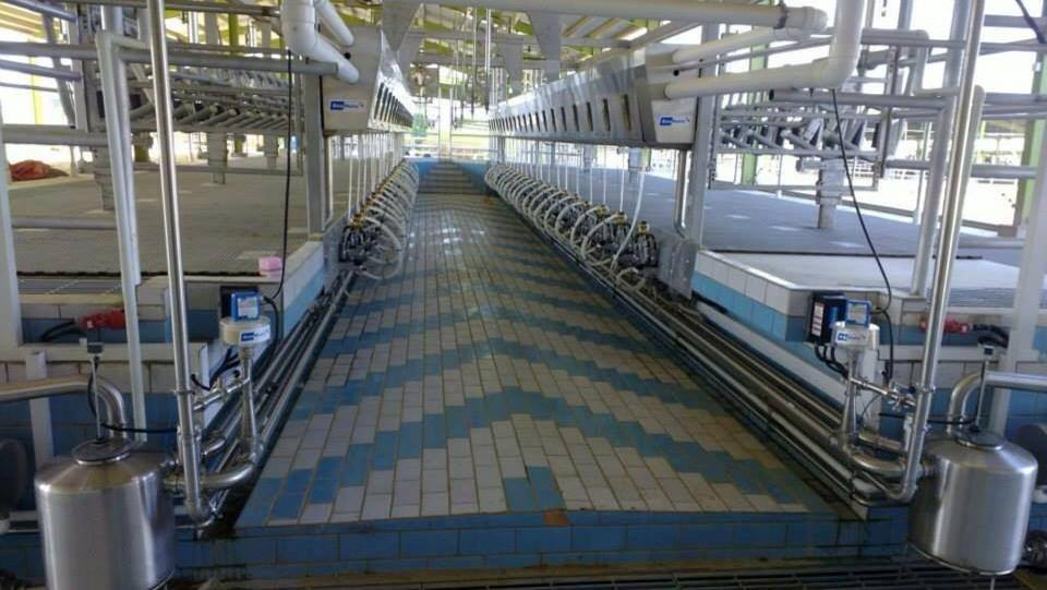 BouMatic Automatic Milking Parlor Installed | Friendship Dairies