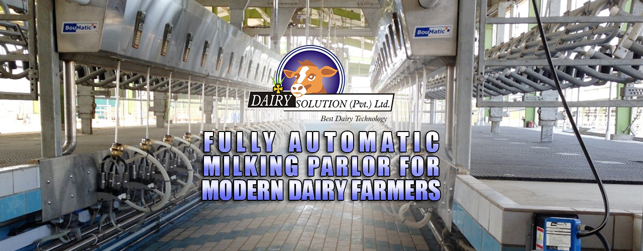 Automatic milking parlor
