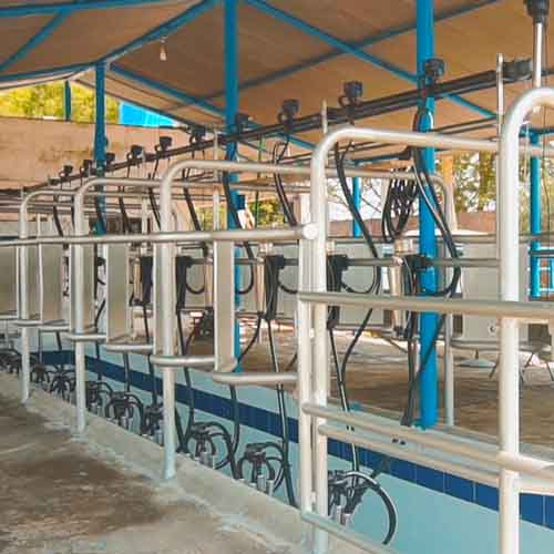 Al-Rehman Dairy Poject milking system